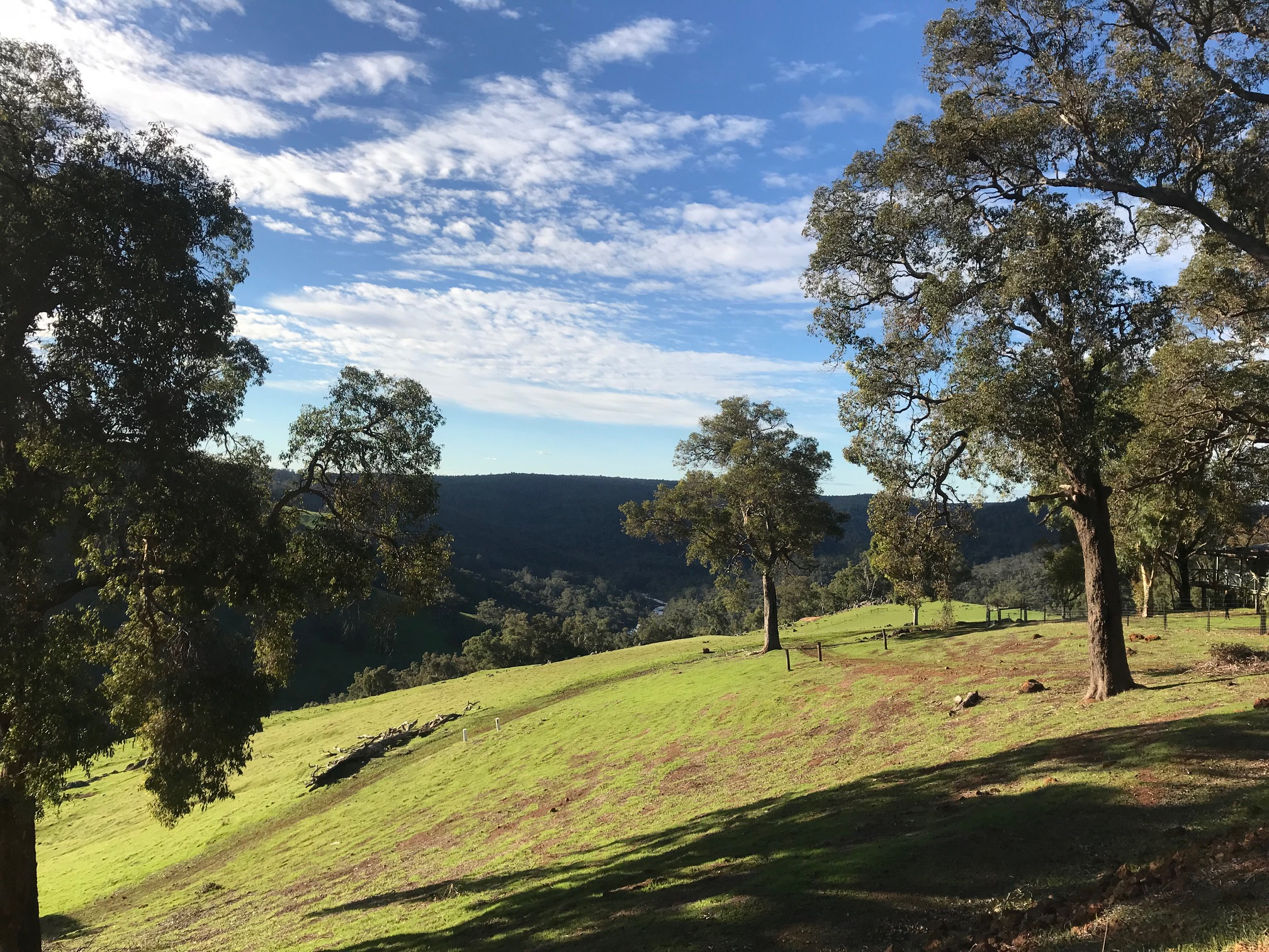how to become a naturopath in western australia