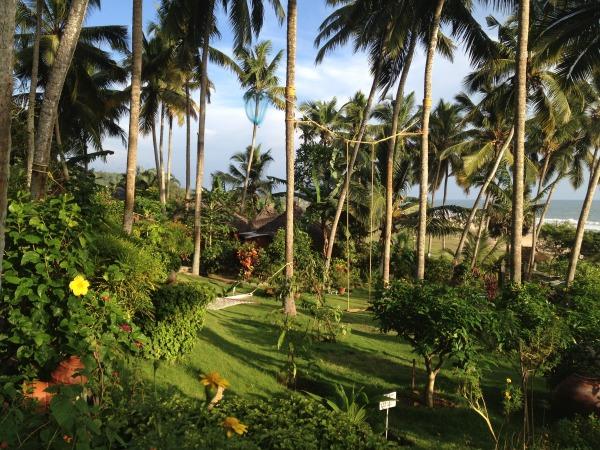 Tropical oasis Kerala